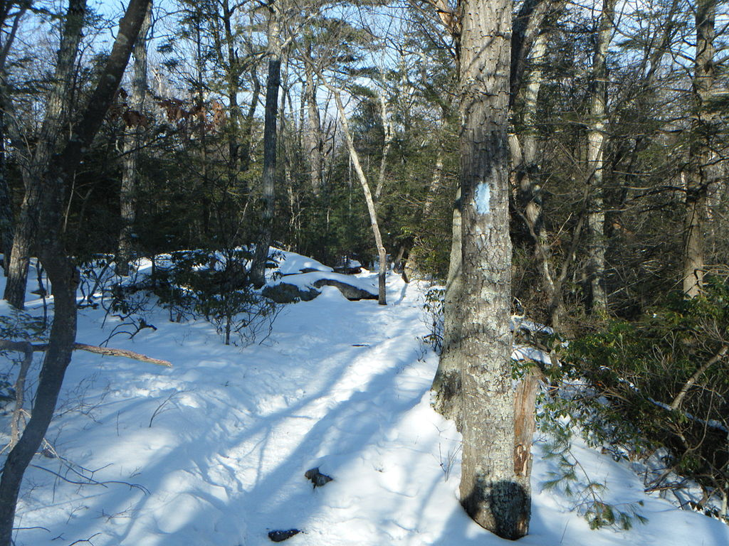 The Shenipsit Trail passes around Soapstone Mountain